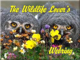 Wildlife Lover's Webring Logo